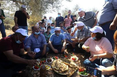 ماذا عن إنتاج الزيتون في فلسطين هذا العام؟