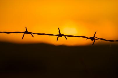 السجن وعالم الكلمات (2)