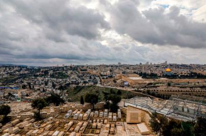 وادي الربابة: صراع على الزيتون المعمر جنوب المسجد الأقصى