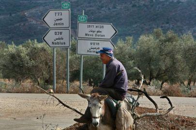 نابلس – جنين: ذاكرة فلسطين ونفطها ورائحتها الزكية
