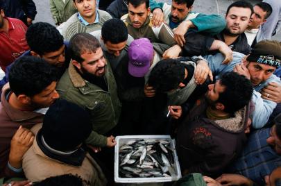 كيف يصبح السمك الفاسد طازجًا في غزة؟